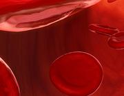 Direct werkende orale anticoagulantia – de praktijk