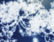 Netwerk VS vasculaire neurologie